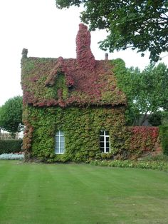 vwcampervan-aldridge: Gate Keepers cottage with Boston ivy in late Summer , beginning to turn red for Autumn. Posted in 2012 Re posted by request. Dartmouth Park, Boston Ivy, Beautiful Homes, Beautiful Places, Home Greenhouse, Gate House, Cabins And Cottages, Stone Houses, Garden Structures