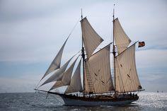 blog-rand-paul-schooner.jpg (Изображение JPEG, 4368×2912 пикселов) - Масштабированное (29%)