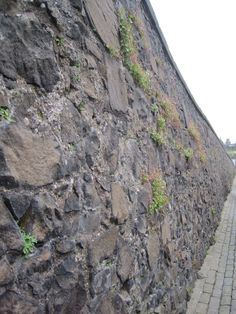 A gorgeous ancient wall on the way to Sterling Castle. Honeymoon In Scotland, Castle Scotland, City Photo, Wall, Walls