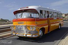 Vintage Malta Bus