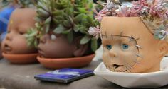 Collect doll's heads for some creepy fun in the garden. (Or you could use the whole doll, and it'd look like hair but a little less creepy... haha)