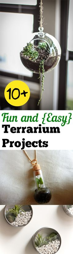 10 Fun and Easy Terrarium Projects. Fun Tips, Tricks, Terrarium plants and tutorials for easy terrarium projects.