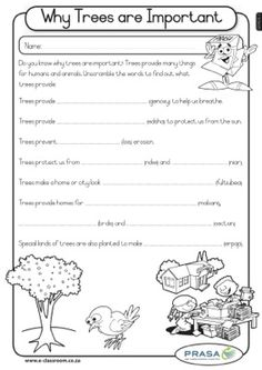 tree parts folder worksheets comprehension worksheets science for kids. Black Bedroom Furniture Sets. Home Design Ideas