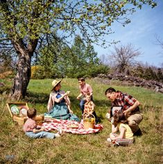 "May 3, 1955. ""Family picnicking and barbecuing outdoors."" Color transparency from photos by Arthur Rothstein and Bob Dierks for the Look magazine assignment ""America Is Bit by the Barbecue Bug."""