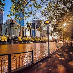 It's been a bit of a slow start, but when spring does peek through it sure does put on a show. Stroll along Southbank and soak up the atmosphere. Or just find a seat by the river and watch the world go by. Photo by @rayofmelbourne #visitmelbourne #visitvictoria #melbourne #yarra