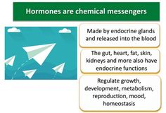Why Hormones Matter and Three Ways to Mess Them Up – Today's facts