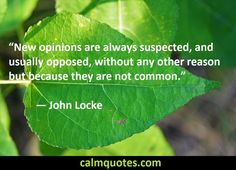John Locke Quotes American Presidents, American History, Calm Quotes, Me Quotes, John Locke Quotes, President Quotes, Famous Books, Inspirational Thoughts, Philosophy