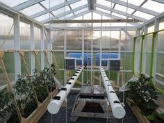 Picture of The Hydroponic, Automated, Networking, Climate Controlled Greenhouse Project Update (July Aquaponics System, Hydroponic Farming, Hydroponic Growing, Diy Hydroponics, Aquaponics Greenhouse, Aquaponics Plants, Concrete Footings, What Is Need, Plant Growth