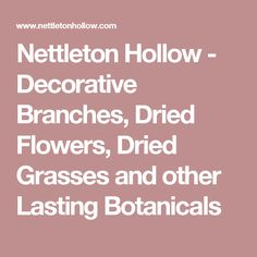Nettleton Hollow - Decorative Branches, Dried Flowers, Dried Grasses and other Lasting Botanicals