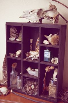 "Curiosity Cabinet. ""Lenore."" Cabinet of Curiosities.. $195.00, via Etsy."