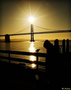 San Francisco Bay Bridge California - in silhouette