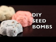 How To Make Seed Bombs | Seed Balls | Craft Idea DIY - YouTube