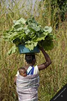 mozambique sofala province gorongosa rural area farmers wife child on-her back vegetables food head returning her-family field subsistance f...