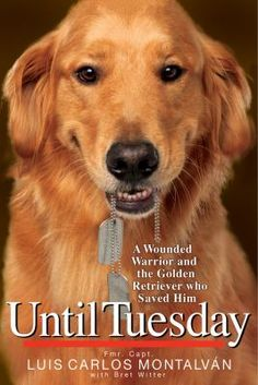 Until Tuesday - a wounded warrior and the golden retriever who saved him.