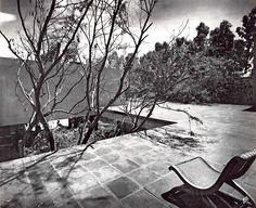 Terraza en la Casa Sordo Madaleno año 1952