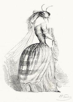 J-J. Grandville, from Vie privée et publique des animaux (Public and Private Life of Animals), under the direction of P. J. Stahl, Paris, 1867.