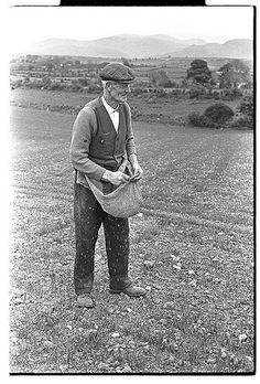 Old farmer sowing seeds from traditional apron, Hilltown, Co.