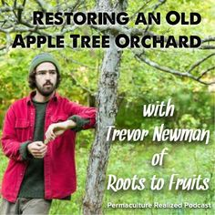 Permaculture Realized Podcast Episode 3, Restoring an Old Apple Tree Orchard and a Sip of Hard Cider with Trevor Newman | Realeyes Homestead