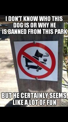 I don't know who this dog is or why he is banned from this park, but he certainly seems like a lot of fun