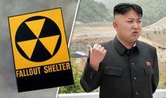 С каждым новым испытанием ракет КНДР в Японии стремительно возрастают продажи средств защиты от радиации, воздушных фильтров и бюджетных атомных бомбоубежищ.