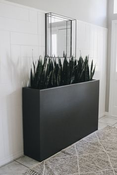 How to Build a Large Planter Box - Within the Grove DIY wood project indoor or outdoor planter box. wood planter How to Build a Large Planter Box - Within the Grove Long Planter Boxes, Large Indoor Planters, Tall Outdoor Planters, Outdoor Planter Boxes, Diy Wood Planters, Diy Planter Box, Modern Planters, Bamboo Planter, Black Planters