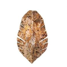 BellacorPro 637940  Banana Leaf Sconce  •Sustainable Chocolate Tiger Shell