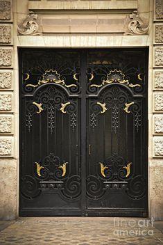 Paris Wrought Iron Door (By Elena Elisseeva)