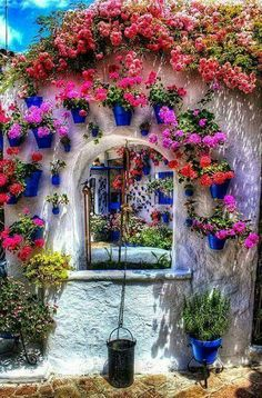 I still remember the gorgeous courtyards/patios in Cordoba and Sevilla during my time in Spain. Unique Gardens, Beautiful Gardens, Beautiful Flowers, Colorful Flowers, Purple Flowers, Pink Purple, Arch Flowers, Mini Gardens, Colorful Garden