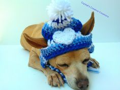 The Blues Dog Hat - Pet Hat - Cat Hat - Dog Beanie - Dog Costume - Pet Costume - Photo Prop - Hand Crochet - Made To Order by CCCreativeCreations on Etsy https://www.etsy.com/listing/103355224/the-blues-dog-hat-pet-hat-cat-hat-dog