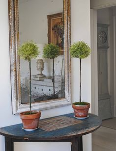 """A Swedish folksy demi-lune with 2 unusual variegated myrtle topiaries."" Loi…"