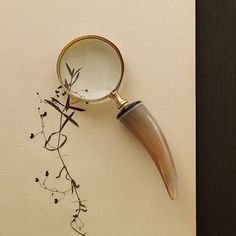 Horn Magnifying Glass   west elm