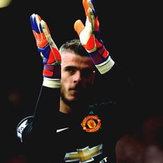 """De Gea: """"Thank you very much indeed for your support. You're unbelievable. #MUFC """" 17.5.2015"""