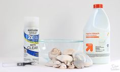 Do you know how to clean seashells the RIGHT way? Yes, there is a right way to clean seashells! This little trick is perfect for getting rid of the gunk and getting those seashells ready for crafting and displaying around the home! I just can't get enough of that beautiful seashell decor! | decorbytheseashore.com