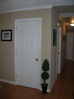 Svelte sage paint color sw 6164 by sherwin williams view for Desert colors interior design
