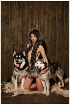 Вольт и Джет   Фото маламуты и хаски