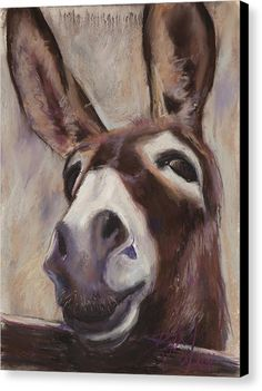 Francis Canvas Print / Canvas Art by Billie Colson Farm Paintings, Animal Paintings, Animal Drawings, Pastel Paintings, Acrylic Painting Canvas, Canvas Art, Canvas Prints, Illustrations, Illustration Art