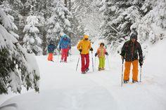 Schneeschuhwandern in der Wildkogel-Arena Neukirchen und Bramberg Winter, Snow, Outdoor, Travel, Winter Time, Outdoors, Outdoor Games, Human Eye