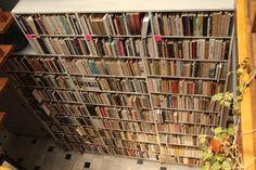 Biblioteca de @Eponiatowska