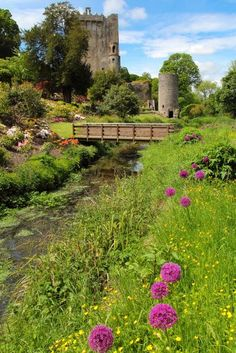 Travel Alone: Five Vacation Destinations That Are Better to Visit Solo - mariasimons. - - Travel Alone: Five Vacation Destinations That Are Better to Visit Solo – mariasimons. Beautiful Castles, Beautiful Places, Amazing Places, Places To Travel, Places To See, County Cork Ireland, Connemara, Travel Alone, Ireland Travel