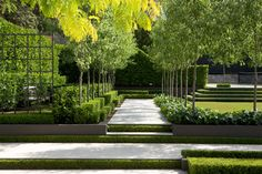 Peter Fudge creates gardens that connect in deep and meaningful ways. Peter has been designing beautiful gardens since Every garden design has… Modern Landscape Design, Modern Garden Design, Landscape Plans, Modern Landscaping, Contemporary Landscape, Landscape Architecture, Backyard Landscaping, Contemporary Gardens, Landscaping Software