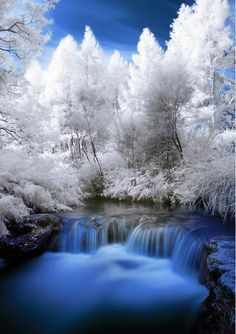 Kerosene Creek in New Zealand ... Possibly the only time winter looks awesome!