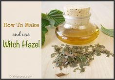 Learning how to make witch hazel gives you assurance of its purity, and it's very easy to make! Once made, use it as a base in many other homemade solutions.