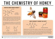 Why Doesn't Honey Spoil? – The Chemistry of Honey – Compound Interest Teaching Chemistry, Science Chemistry, Science Facts, Food Science, Organic Chemistry, Science Experiments, Fun Facts, Science Projects, Chemistry Review