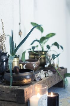 low wooden 'altar' with plants, candles, and crystals