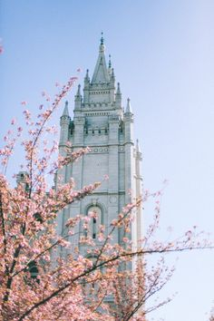 Lover this temple. So simple, yet has so much elegance. Lds Temple Pictures, Church Pictures, Cool Pictures, Beautiful Pictures, Salt Lake Temple, Salt Lake City Utah, Ancient Greek Architecture, Gothic Architecture, Slc Temple