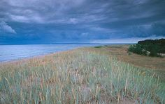 The coast of the Naissaar Island, Estonia