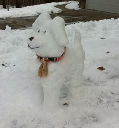 Snow dog! My snow creation