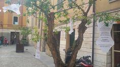 Reparto donna parte 2.  #streetpoetry #nomenomen