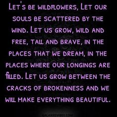 Let's be wildflowers. Let out souls be scattered by the wind. Let us grow, wild and free, tall and brave, in the places that we dream, in the places where our longings are filled. Let us grow Free Soul Quotes, Wild And Free Quotes, Wild Quotes, Flower Child Quotes, Wild Flower Quotes, Growing Quotes, Star Quotes, Quotes About Stars, Hippie Quotes
