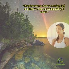 Una respiración de forma adecuada, es una herramienta poderosa que ayuda a: *Problemas de comunicación y expresión verbal. *Desequilibrios y poca claridad mental. *Emociones negativas. *Reduce niveles de ansiedad, estrés, pánico, miedo, etc. *Aminora fobias. *Aminora traumas. *Mantiene un ritmo vital y relajado. *Aumenta Vitalidad Mental. #VitalidadMental